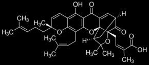 Gambogic acid (Garcinia hanburyi)